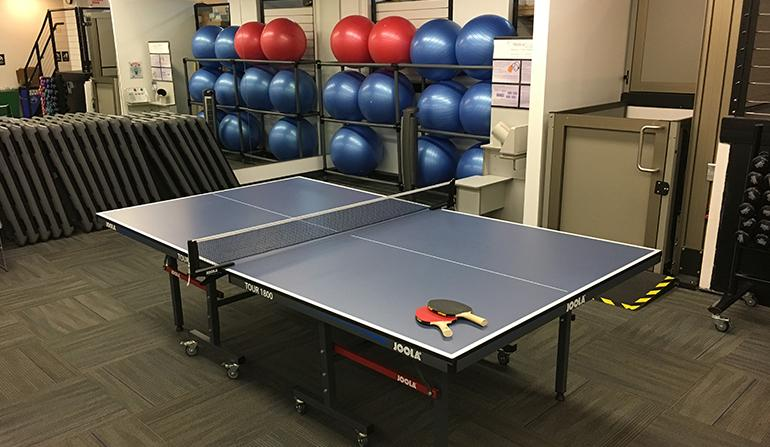 Wellness Center Ping Pong Table